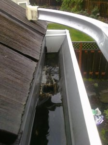 water flowing down gutter into downspout