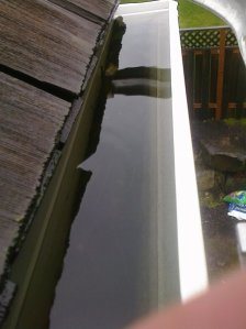 Clogged gutter in NW Portland